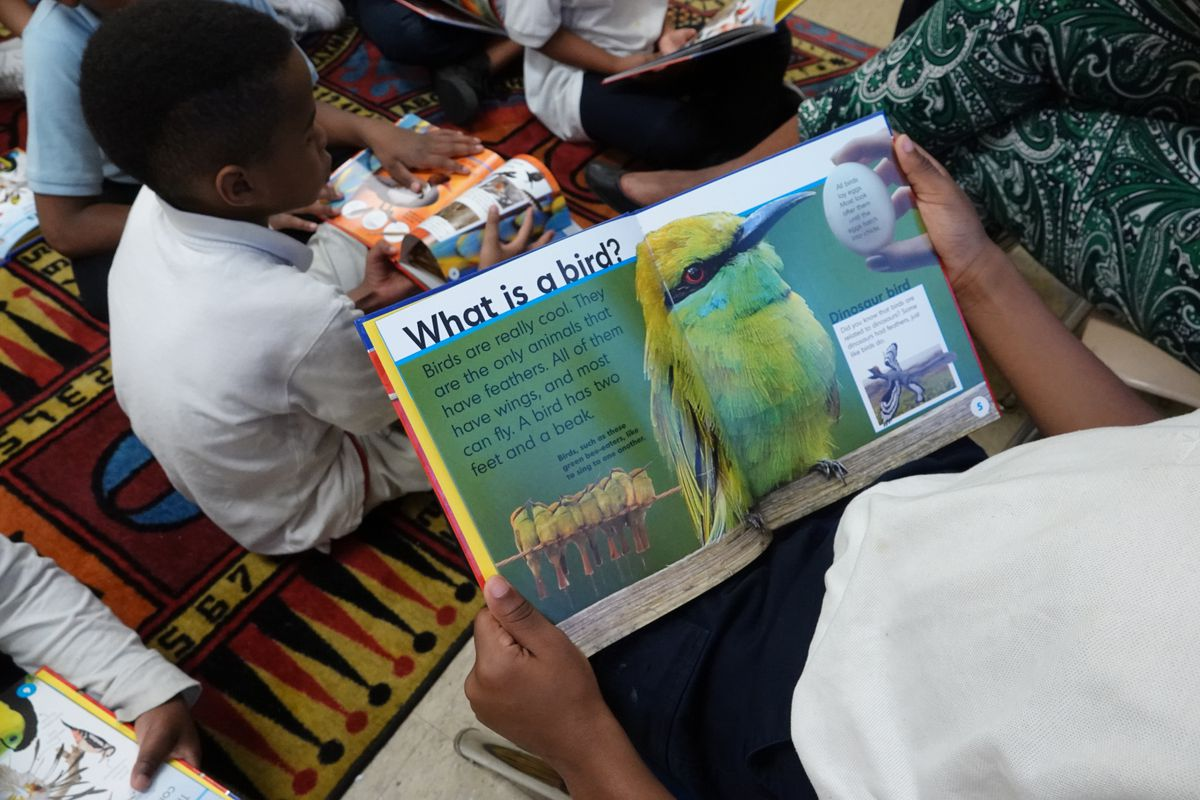 """A close-up of a student reading a book during a reading circle. The book is open to a picture of a yellow bird. The words """"What is a bird?"""" are in bold type on top of the page."""