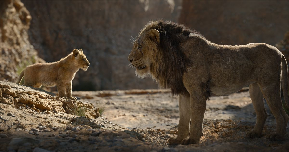 The Lion king lions - young Simba and Scar