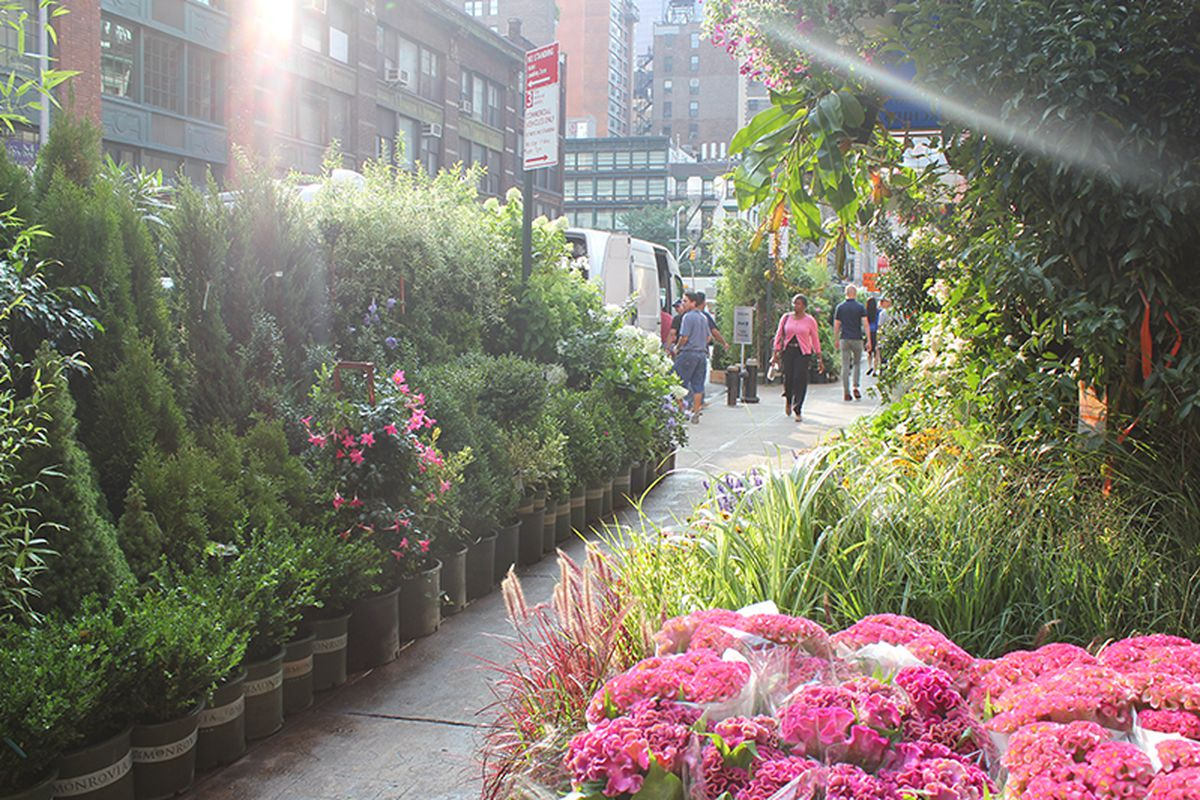 """<a href=""""http://erinontherun.com/2014/08/08/how-to-navigate-the-nyc-flower-district/"""">Erin on the Run</a>"""