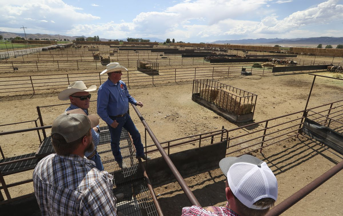 Gus Warr, the team lead for the Bureau of Land Management's Wild Horse and Burro Program in Utah, talks with visitors during a tour of the Axtell contract off-range corrals in Axtell, Sanpete County, on Thursday, Sept. 5, 2019. The Axtell facility is one of two locations in Utah that provides care to wild horses removed from the range.