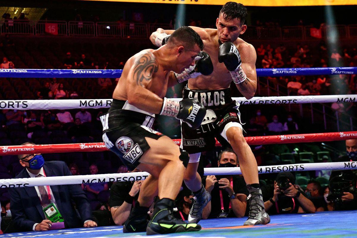 BOX-WORLD-WBA-FEATHER