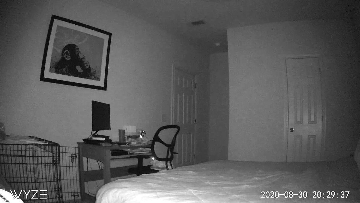 wyze nighttime snapshot