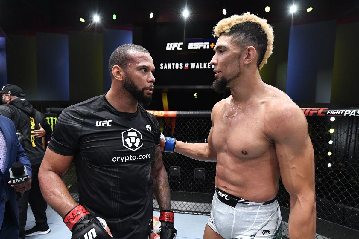 UFC Fight Night: Santos v Walker