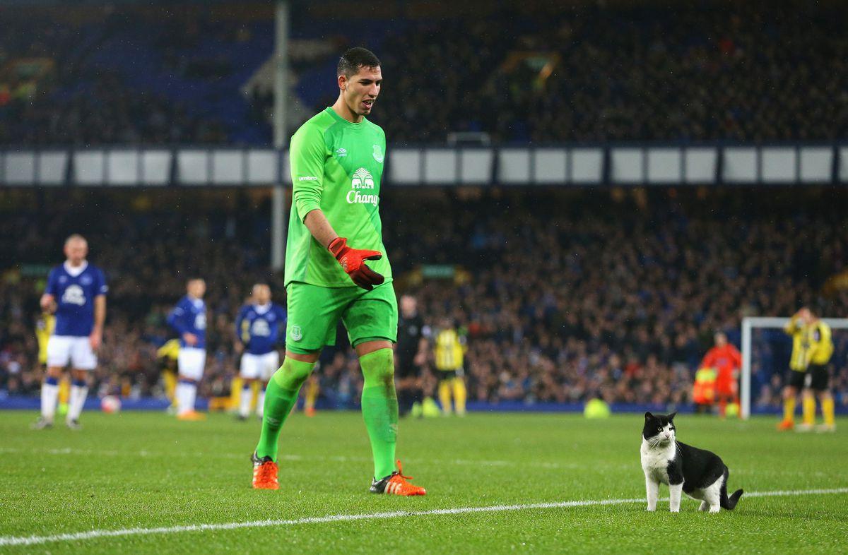 Everton v Dagenham & Redbridge - The Emirates FA Cup Third Round