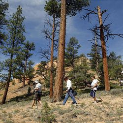 Hikers enjoy the non-motorized trails in the Red Canyon area in Dixie National Forest. There are about 50 miles of trails for horses, mountain bikers and hikers.