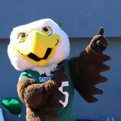Swoop showing off before the game