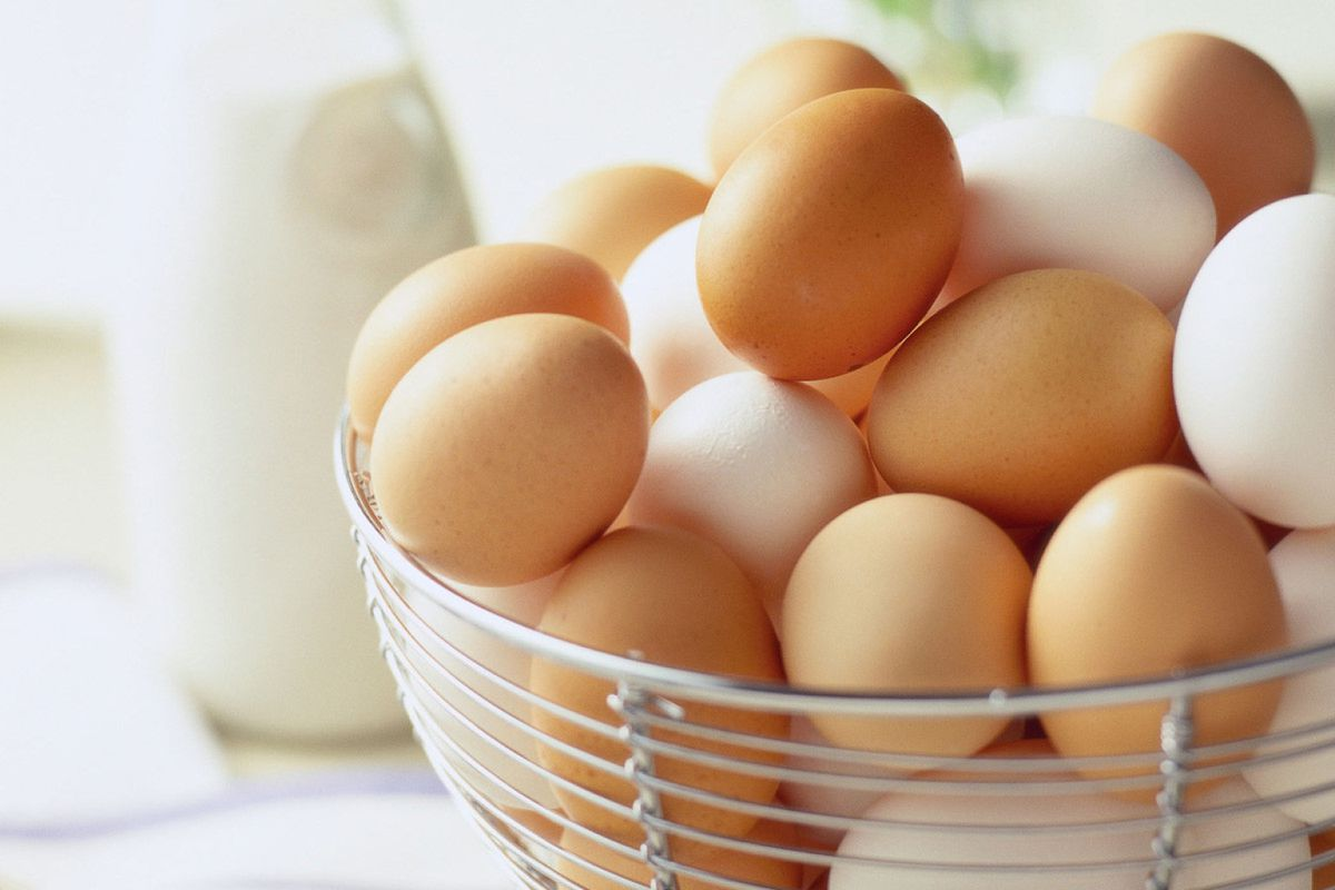 i ate three eggs every single morning for a week here u0027s what