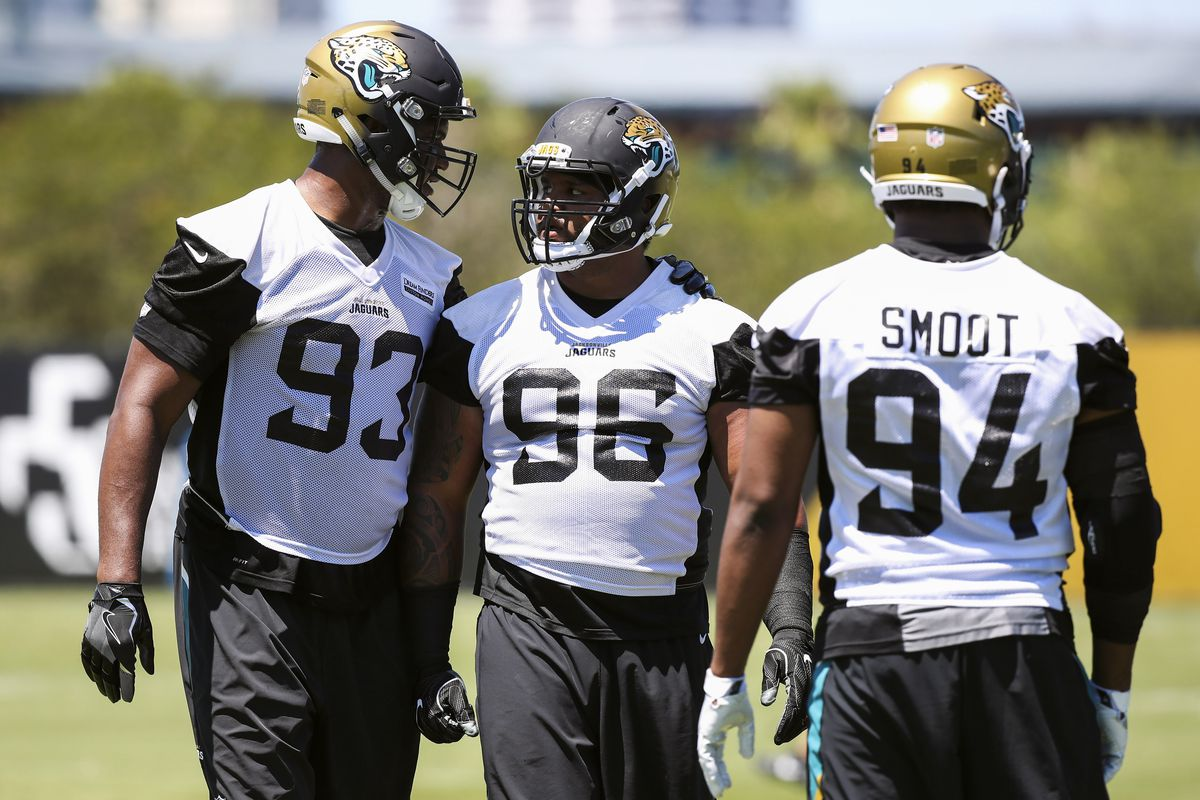 Calais Campbell sees potential on Jaguars defensive line Big Cat