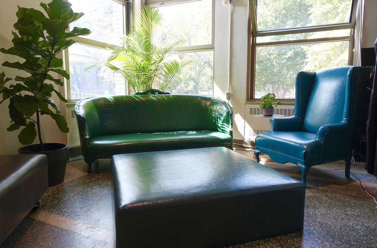 green sofa, with blue arm chair, plants, in a luminious room