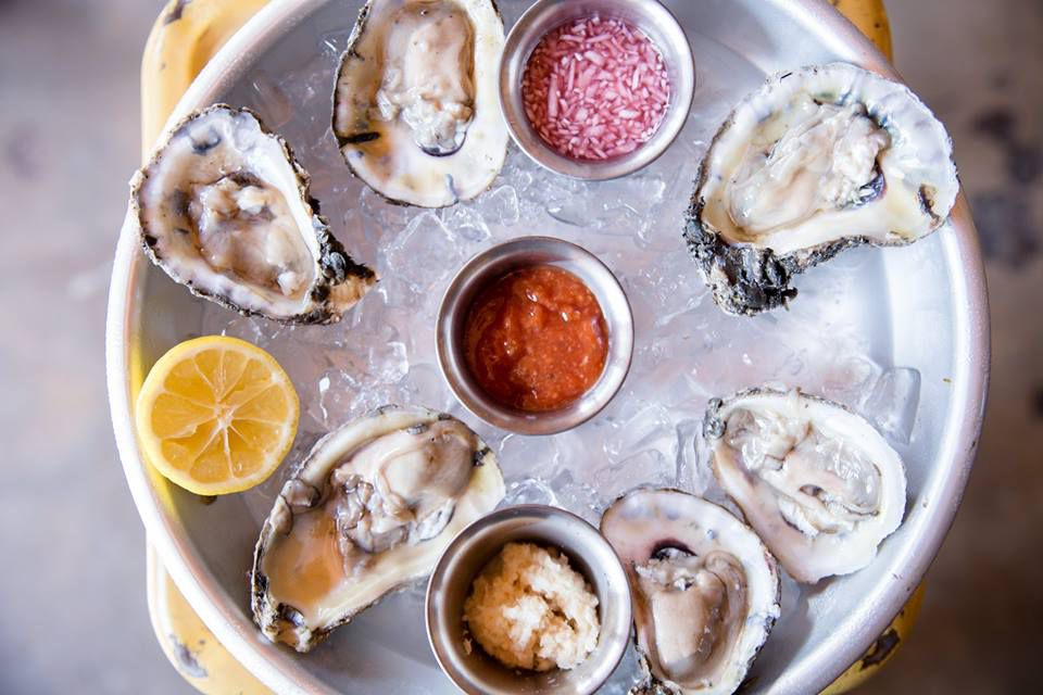 Oysters from TLC
