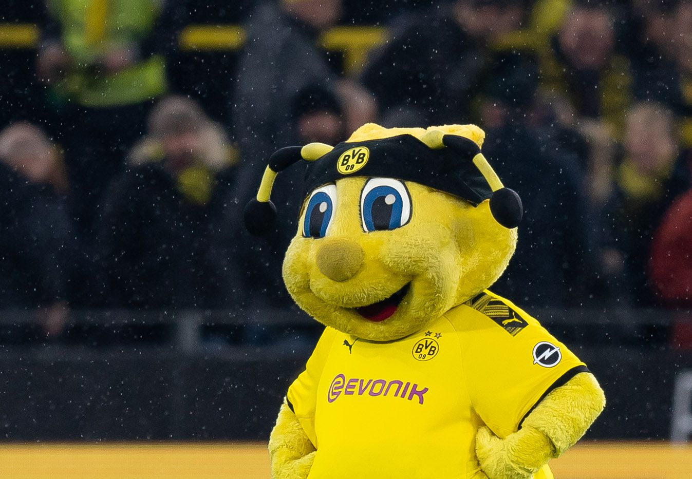 Borussia Dortmund Vs Fortuna Dusseldorf 2020 Time Tv Channels Stream And How To Watch Bundesliga Online Fear The Wall