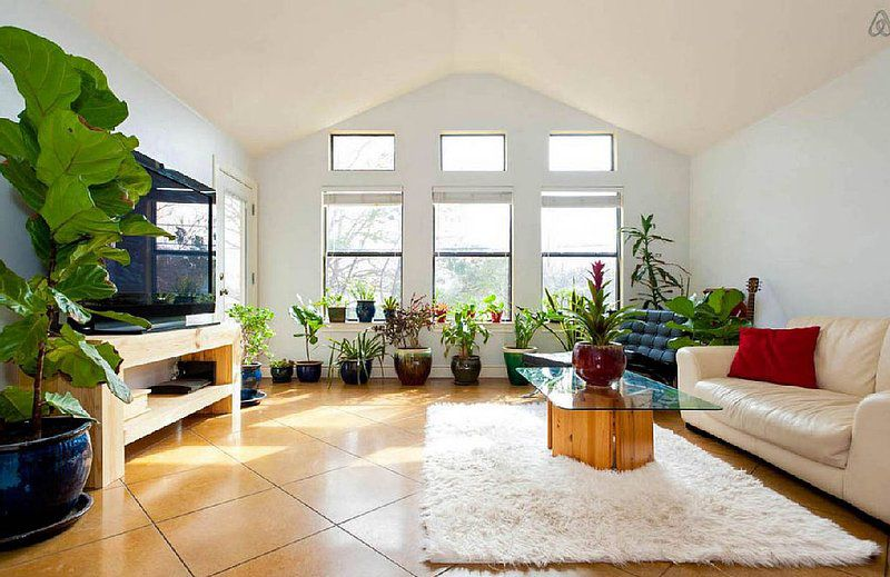 Living room with white walls, a vaulted roof, and a tiled floor. There are three double hung windows with three clerestory windows above them on one wall, which is also lined with large plants. A couch, a chair, and a coffee table on a rug are one one sid