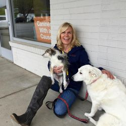 Cathy King of Canines With a Cause shows off her friends Angel and Josie.
