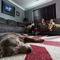 The Hadley family, from left, Erica, Dan, Dylan, 5, and Zane, 8, along with Labrador retriever Gandalf, watch the Sunday afternoon session of the 190th Annual General Conference of The Church of Jesus Christ of Latter-day Saints in their Herriman home on Sunday, April 5, 2020.