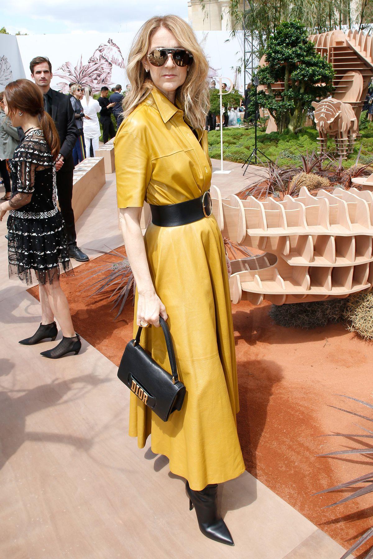 Celine Dion in Dior.