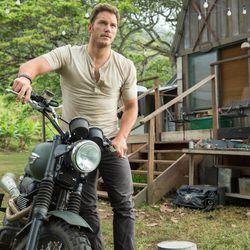 "Chris Pratt Stars as Owen in ""Jurassic World."""