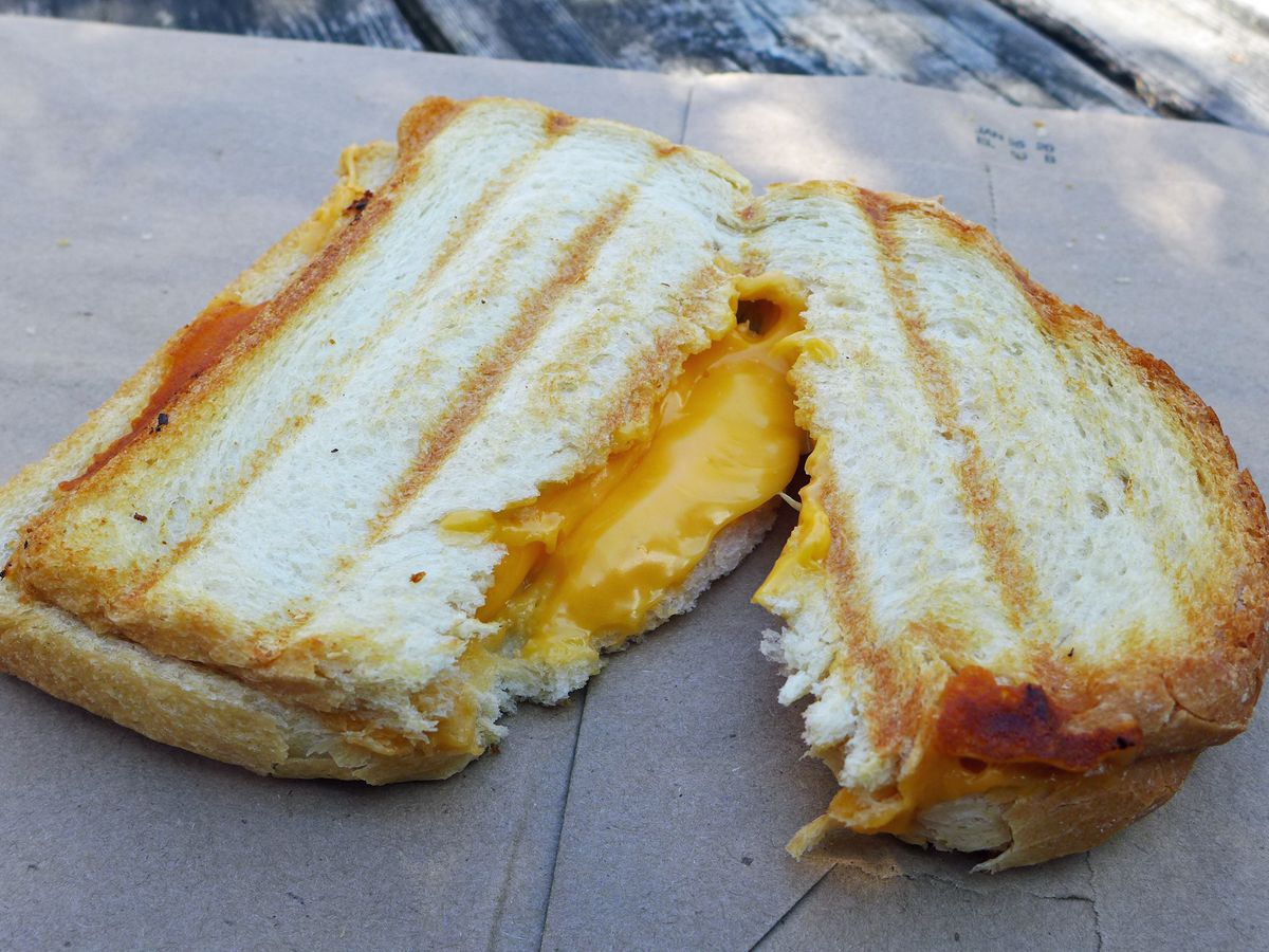 In the shade, a toasted cheese cut in half with grill marks on the bread but no grease.