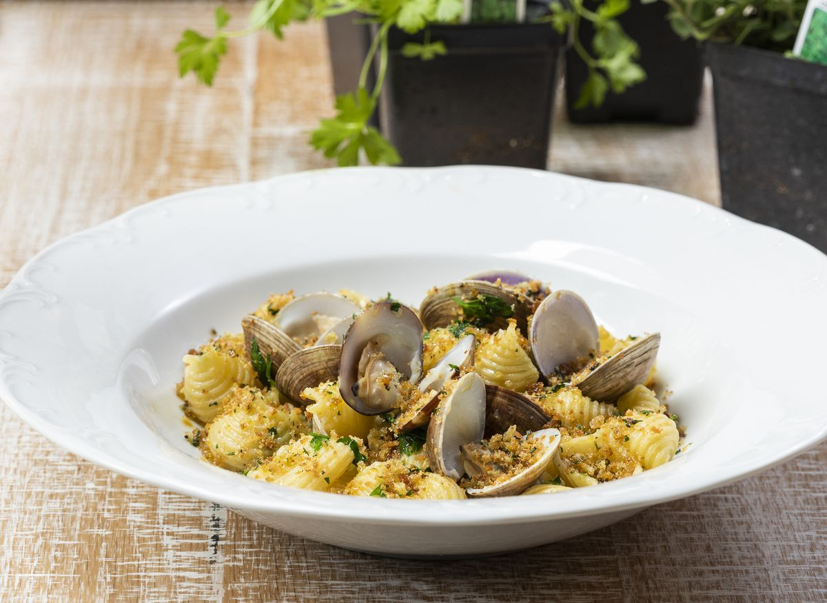 shell pasta with clams in a white bowl