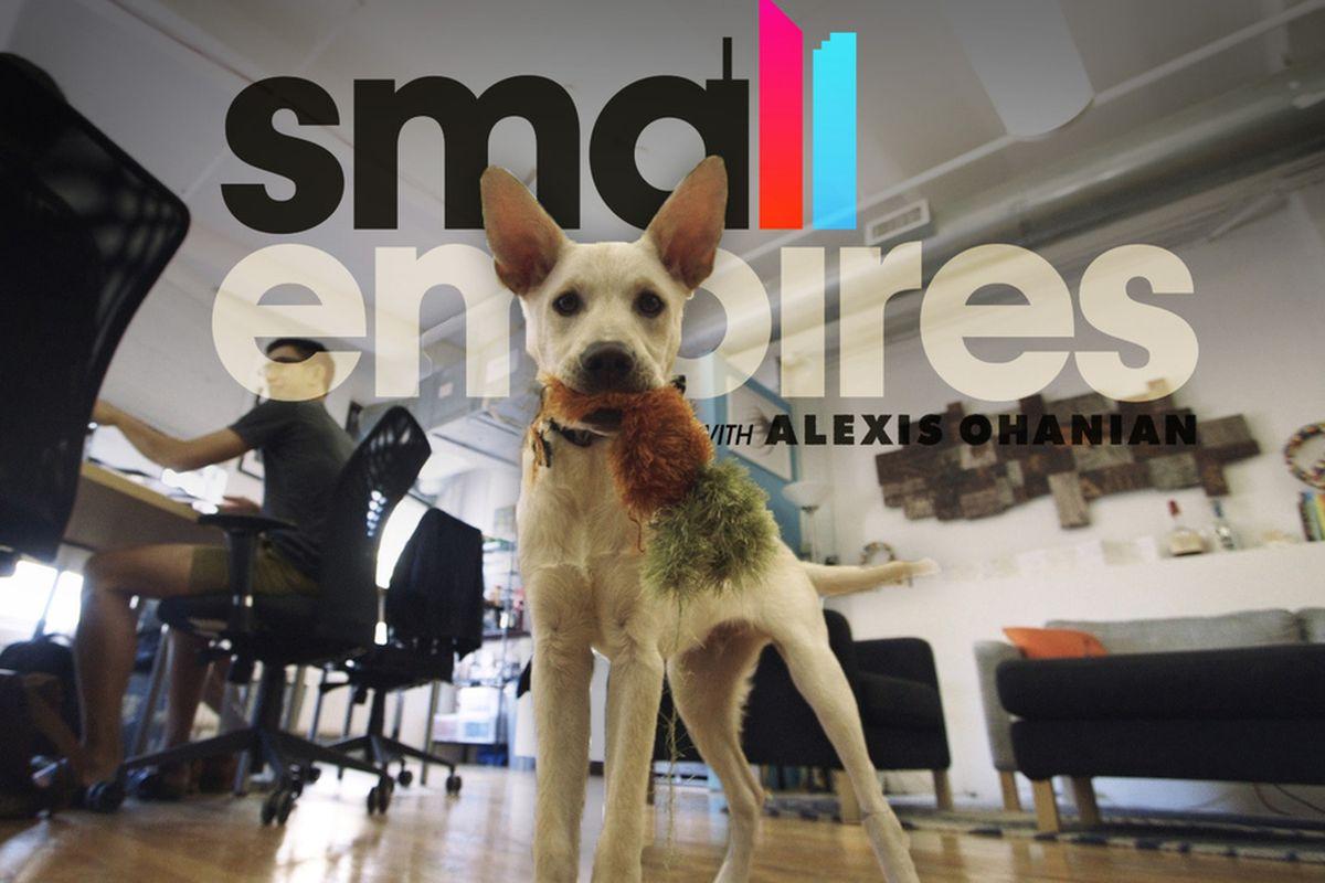 SME artsicle dog