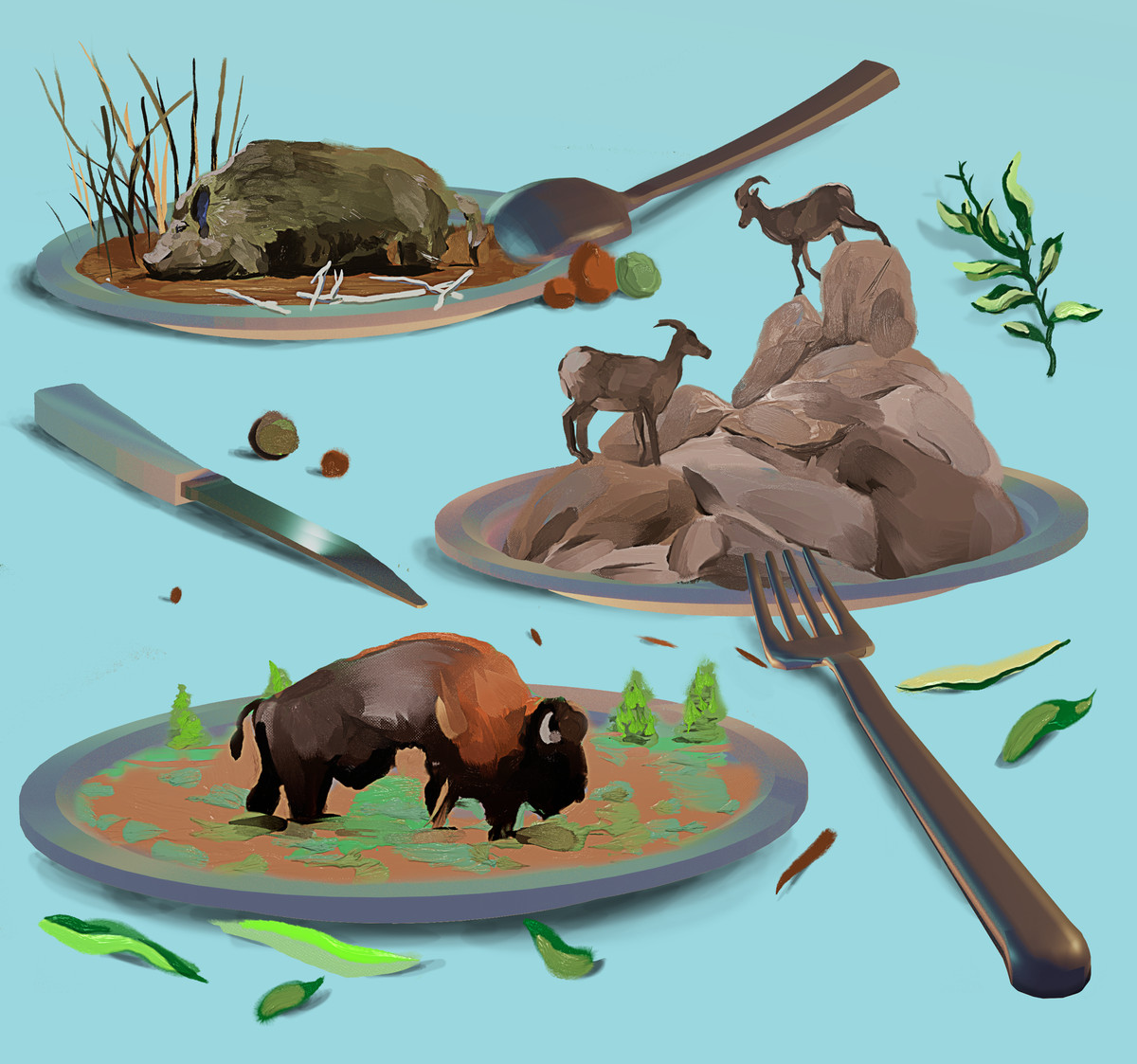 Three plates each show a different scene: a boar lying down; two deer on rocks; a bison grazing.