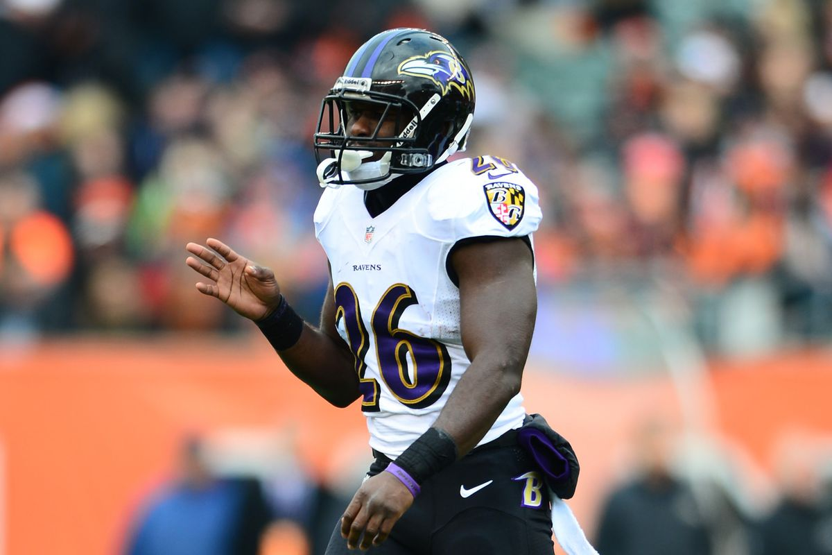 Matt Elam played most of his rookie season as Baltimore's free safety.