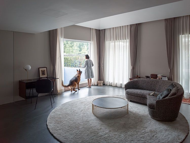 Dog and owner looking out living room window