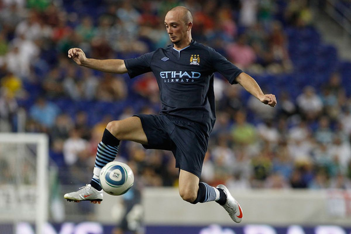 Stephen Ireland - does he fit?