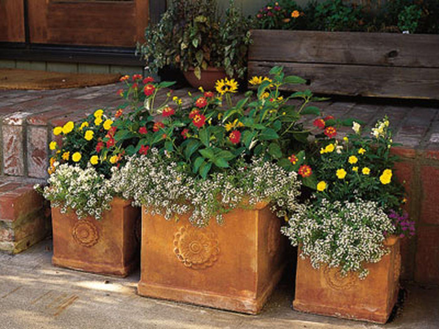 Plant Flower Pot Garden Holder Pots Planter Herb Coloured Home Garden Decor NEW#
