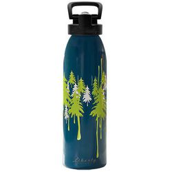 """<strong>Liberty Bottleworks</strong> Recycled Aluminum Water Bottle at Eastern Mountain Sports, <a href=""""http://www.ems.com/product/index.jsp?productId=13312865&cp=3705100.4007380.16933246"""">$19.50</a>"""
