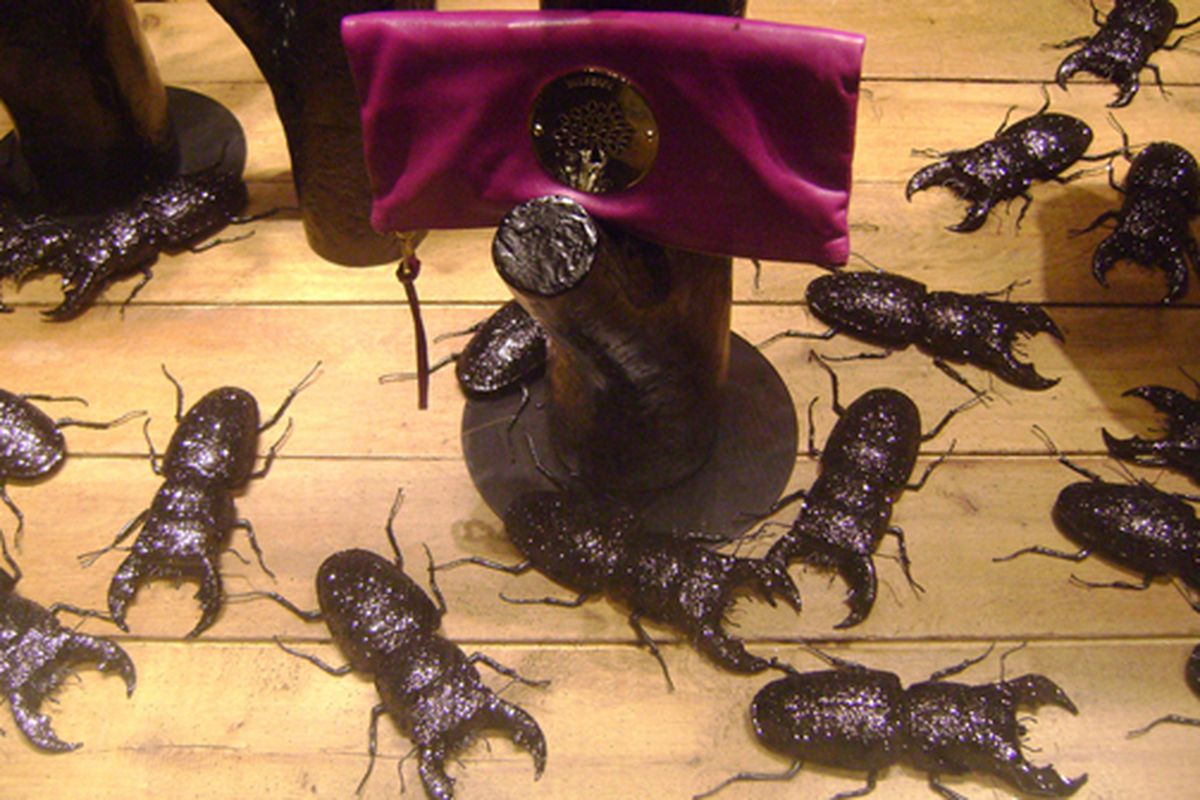 """Glittery bugs in the window at Mulberry via <a href=""""http://www.flickr.com/photos/jetsetcd/3810900662/in/pool-rackedny"""">Jetsetcd</a>/Racked Flickr Pool"""