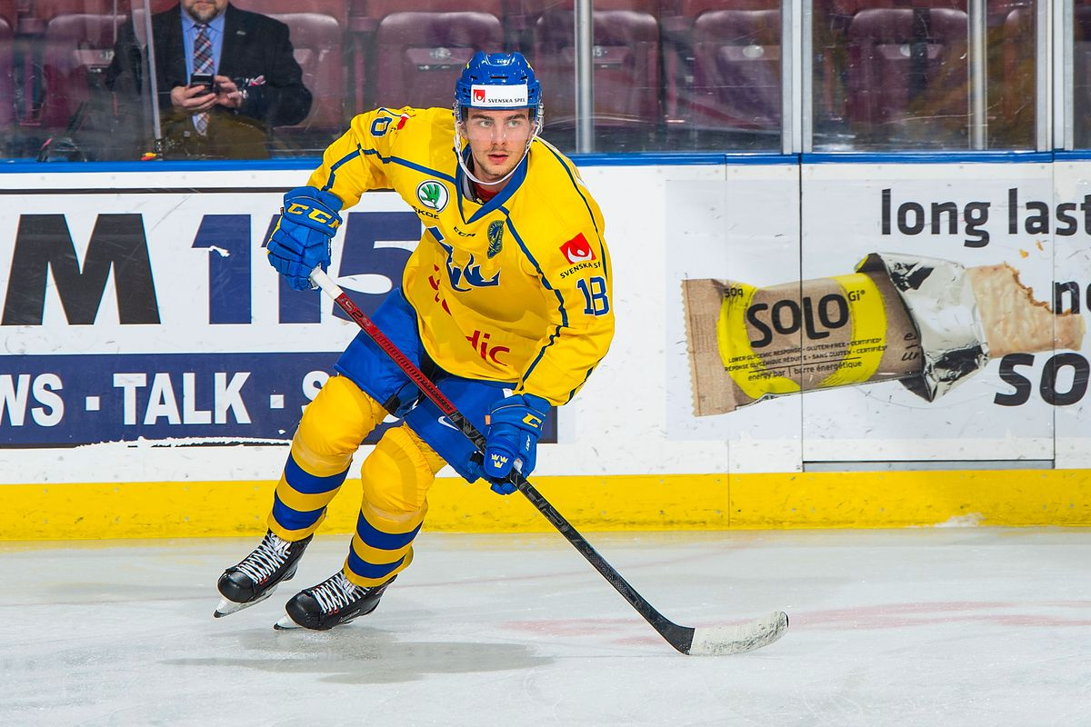 2019 World Junior Hockey Championship Team Sweden Preview Roster