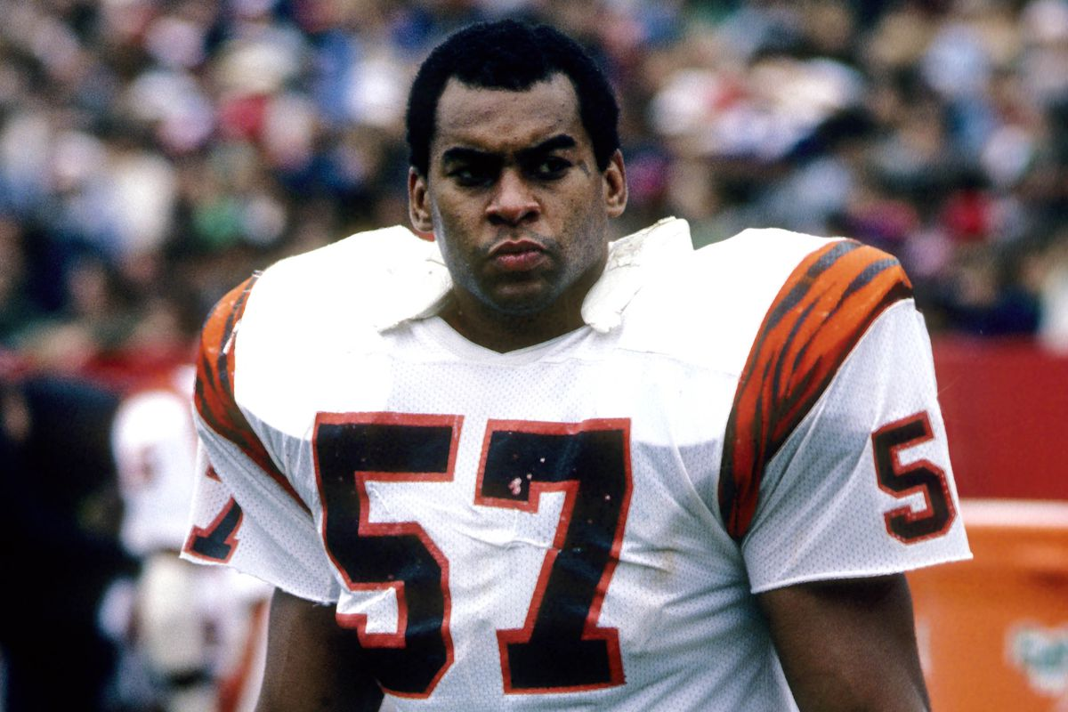 No 7 Bengals draft pick of all time Reggie Williams Cincy Jungle