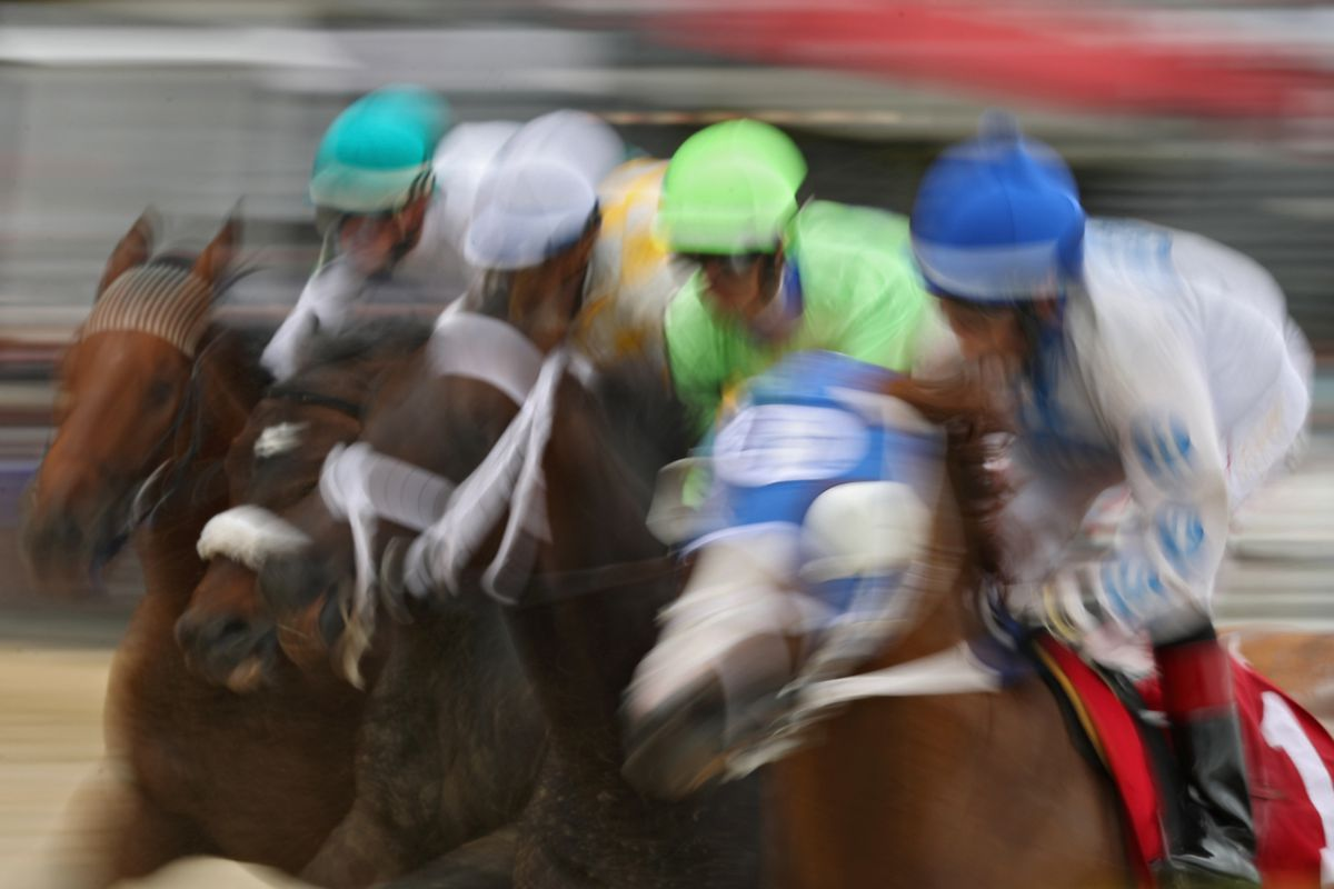 Preakness 2017 results live coverage of saturdays races at pimlico photo by patrick smithgetty images publicscrutiny Gallery