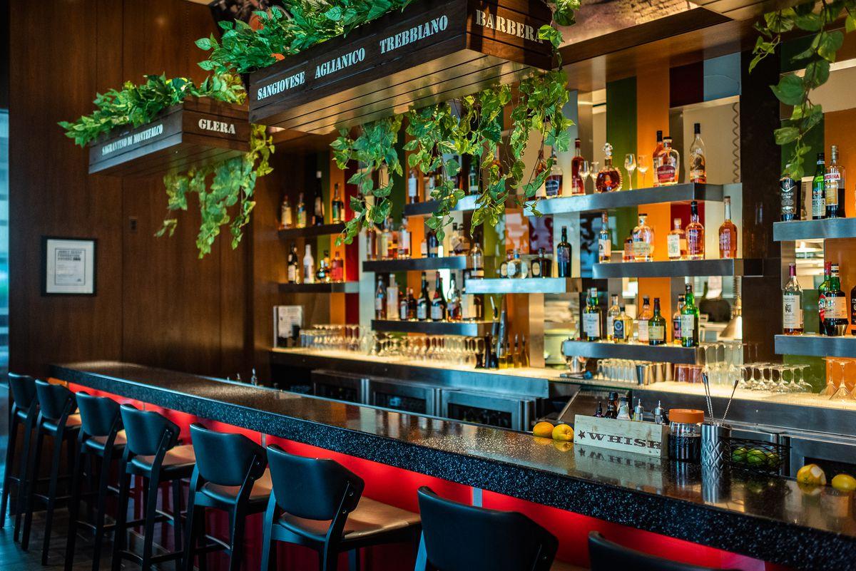 New planters hang above the bar at Modena.