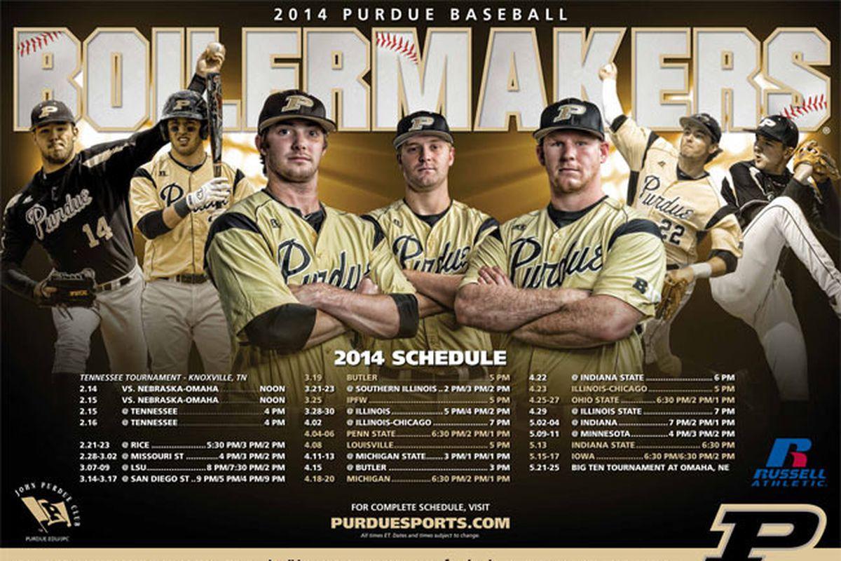 2014 Baseball Poster