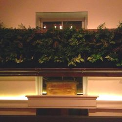 The wall garden: antique copper, reclaimed wood, and hydroponic watering system