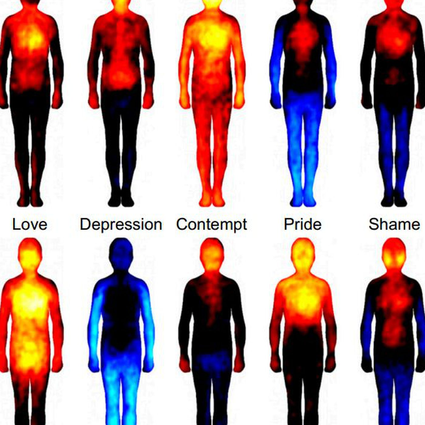 Body Atlas Shows Where Emotions Hit The Hardest The Verge