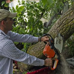Drew Griffin saws a fallen tree after a tornado struck Washington Terrace on Thursday, Sept. 22, 2016. Officials said nobody was injured in the twister.