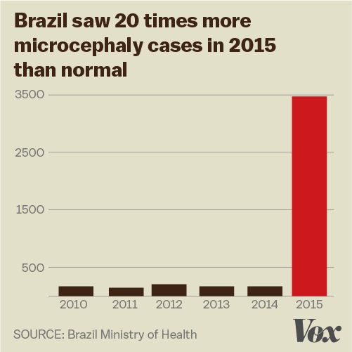 Zika Virus Explained In 6 Charts And Maps Vox