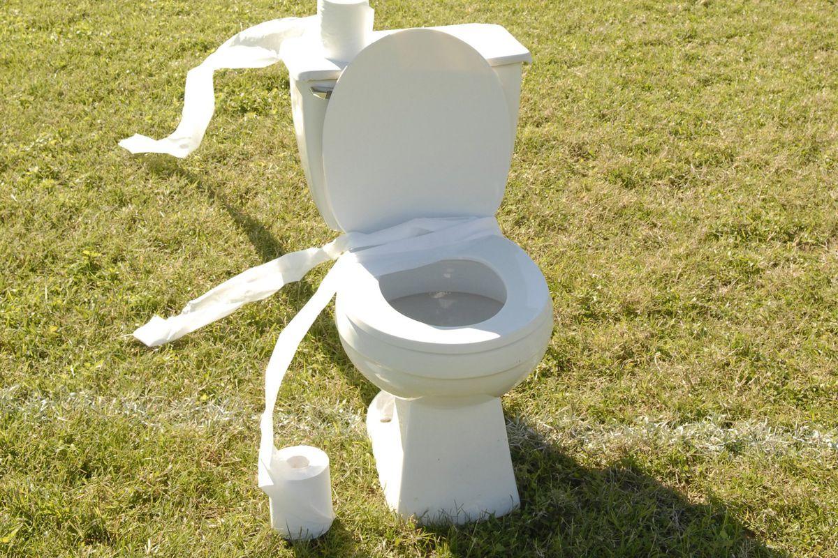 Toilet sitting on a football field.