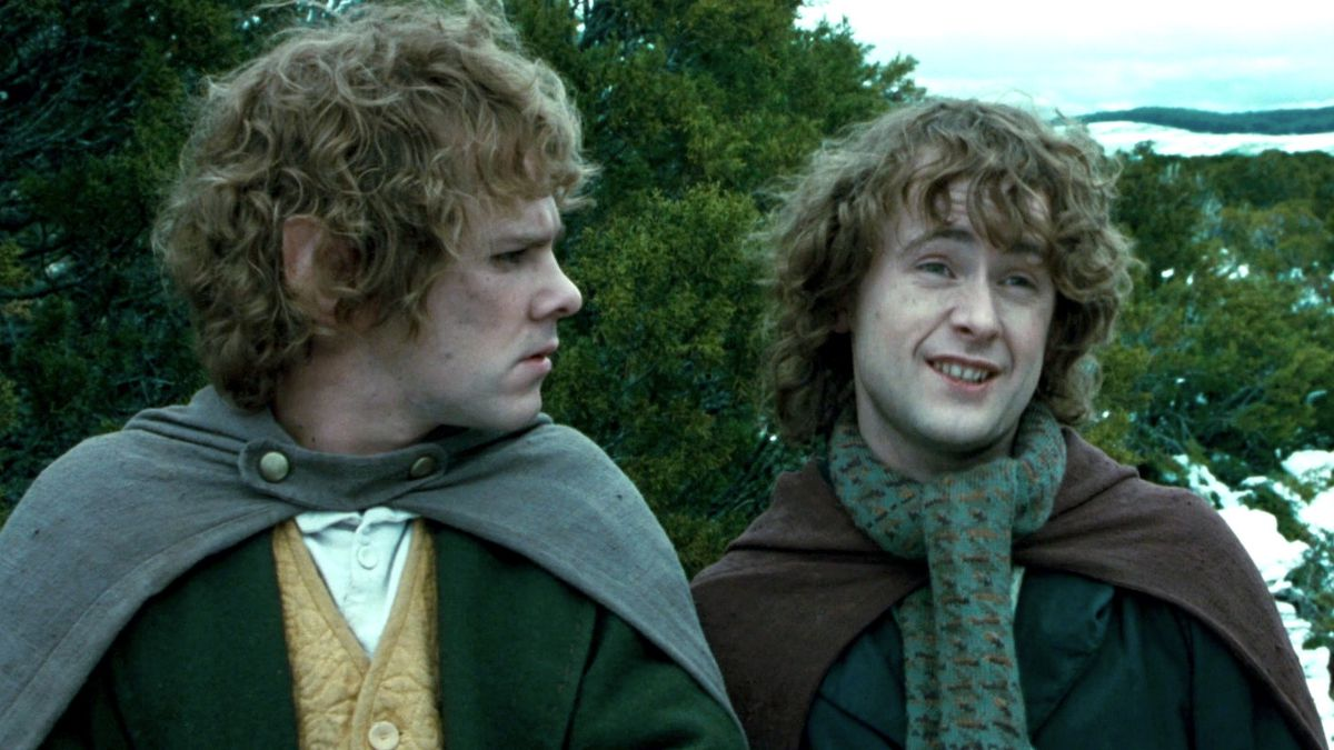 pippin gives merry the stink eye in Lord of the Rings