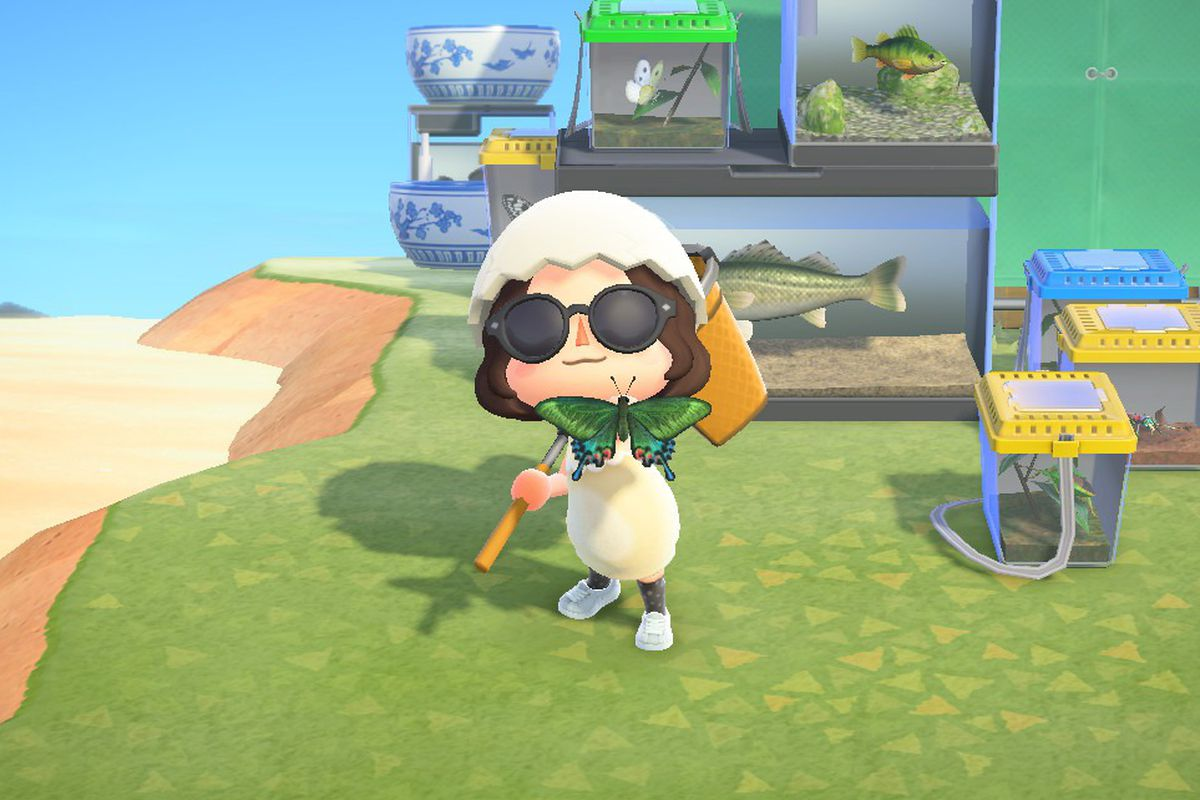 My animal crossing character wearing an eggshell hat holding a butterfly in front of tanks and crates