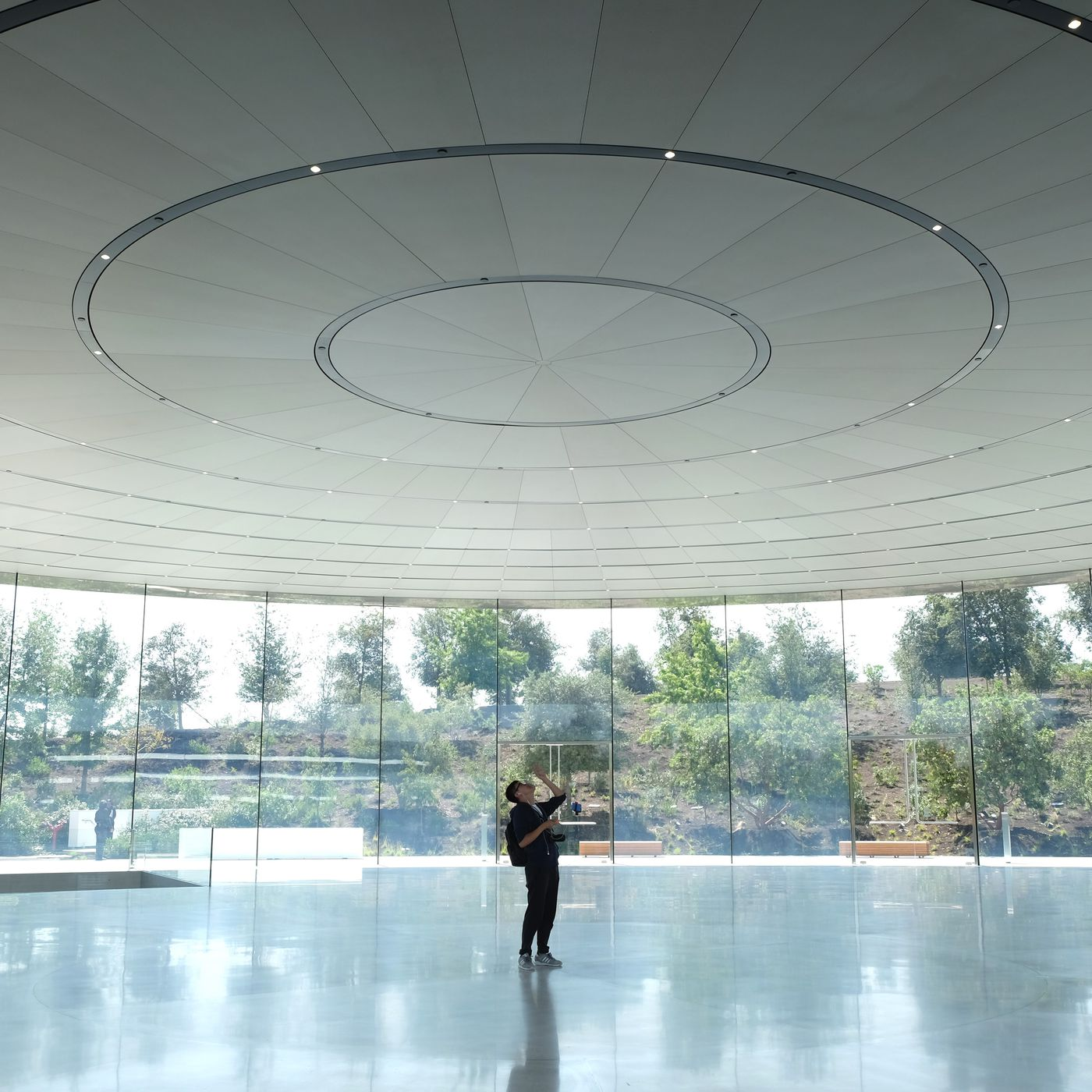Apple Park: The one that got away - Curbed