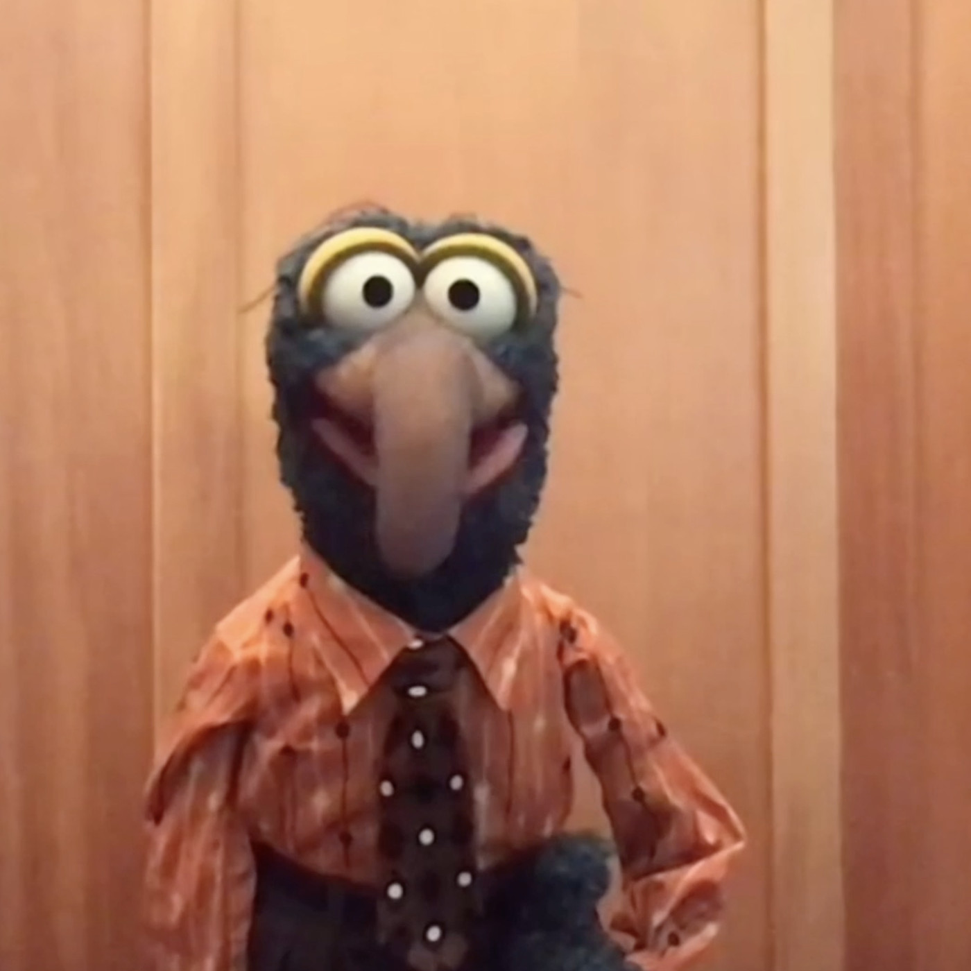 Gonzo movies videos