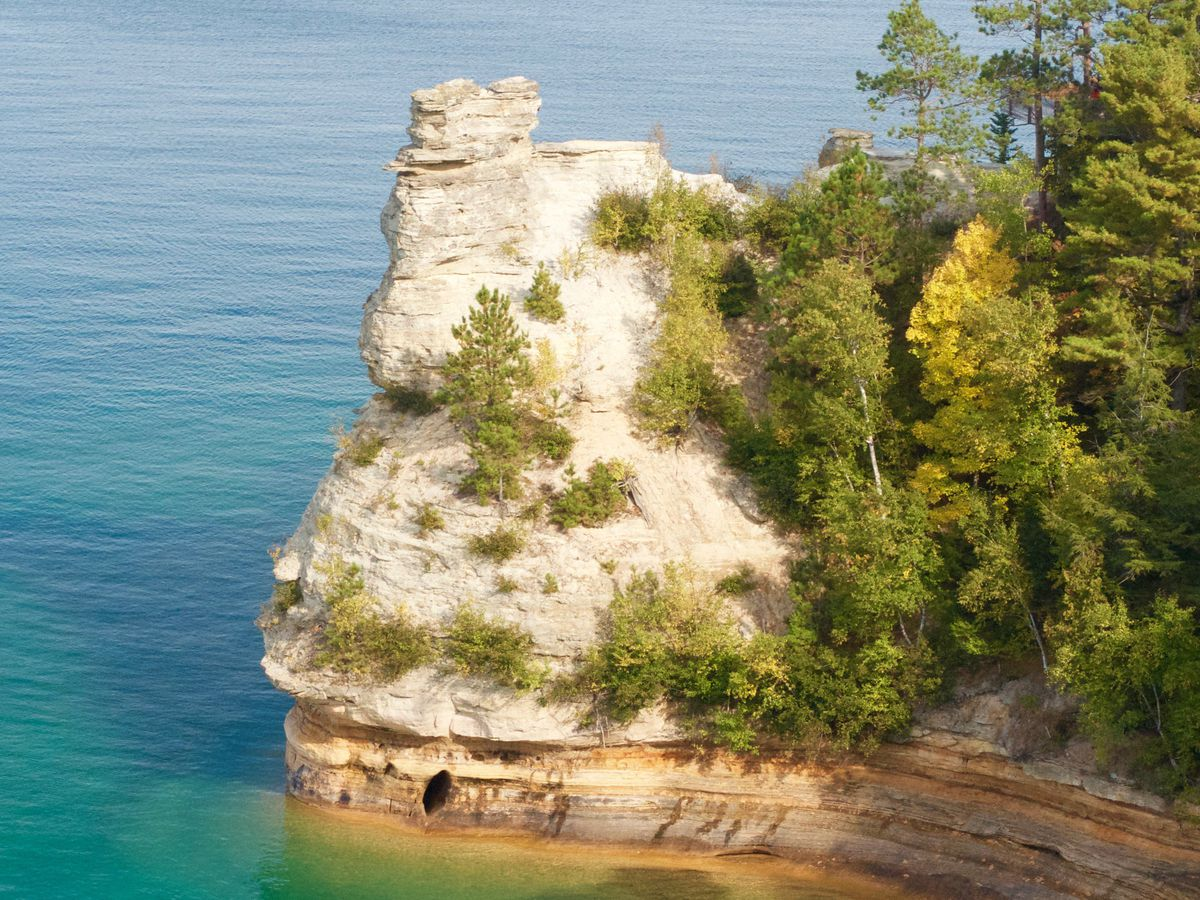 A large rock face with trees jutting out into a body of water.
