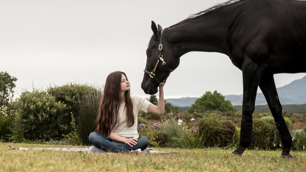 Disney Plus Black Beauty Almost Had A Live Horse Birth Scene Polygon