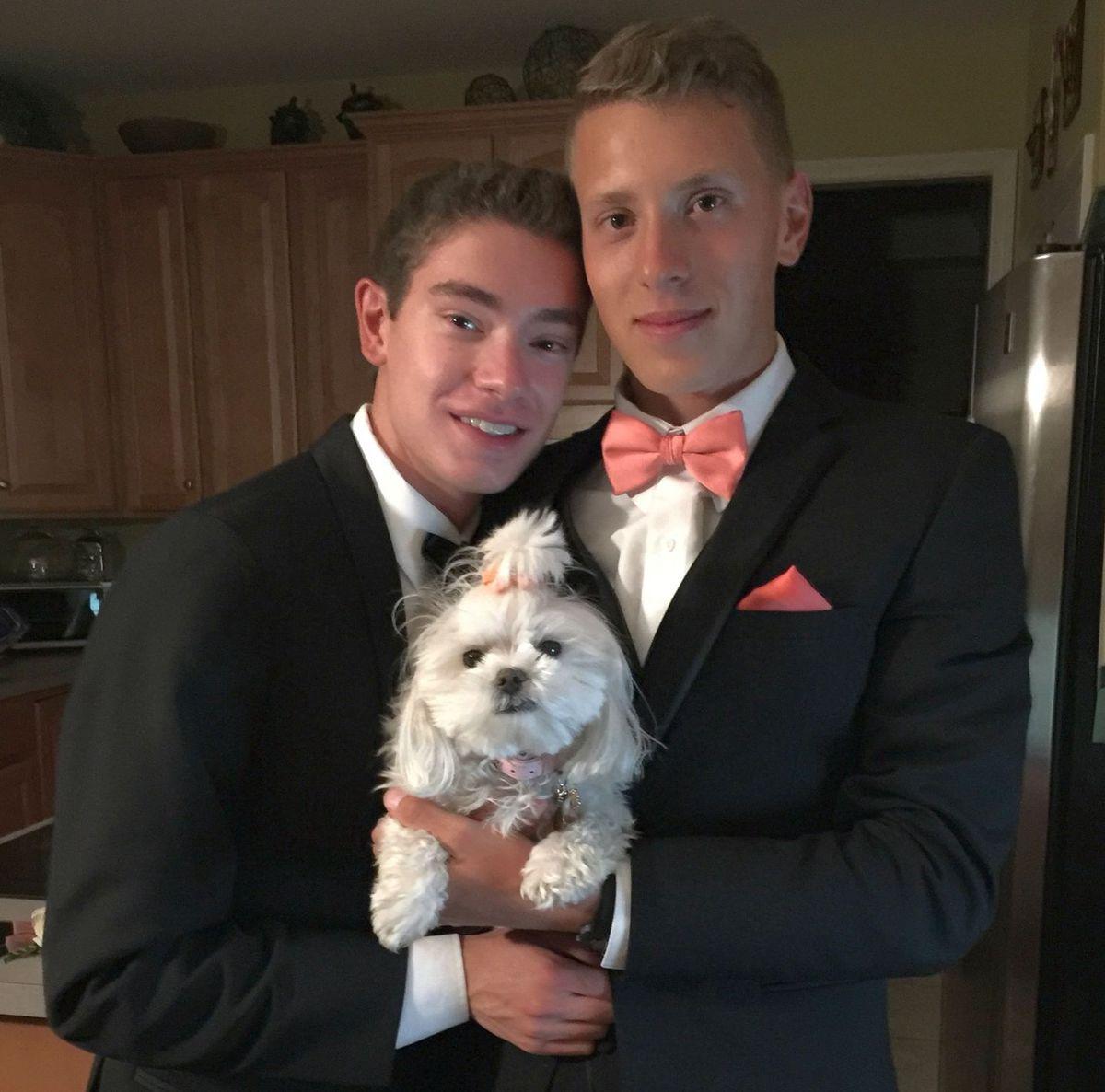 Prom dog