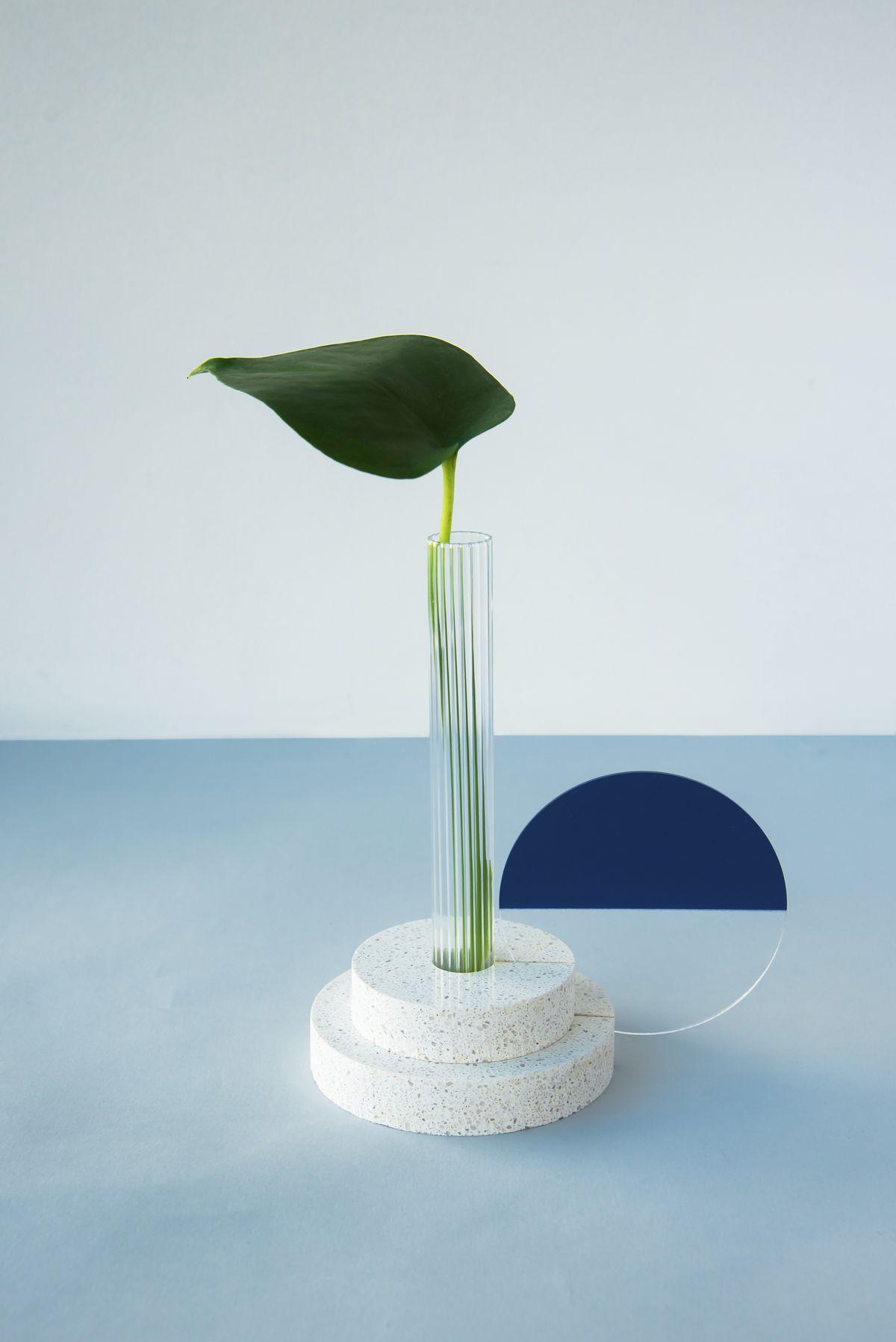 Glass vase with leaf stem