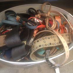 Women's Belts, $49