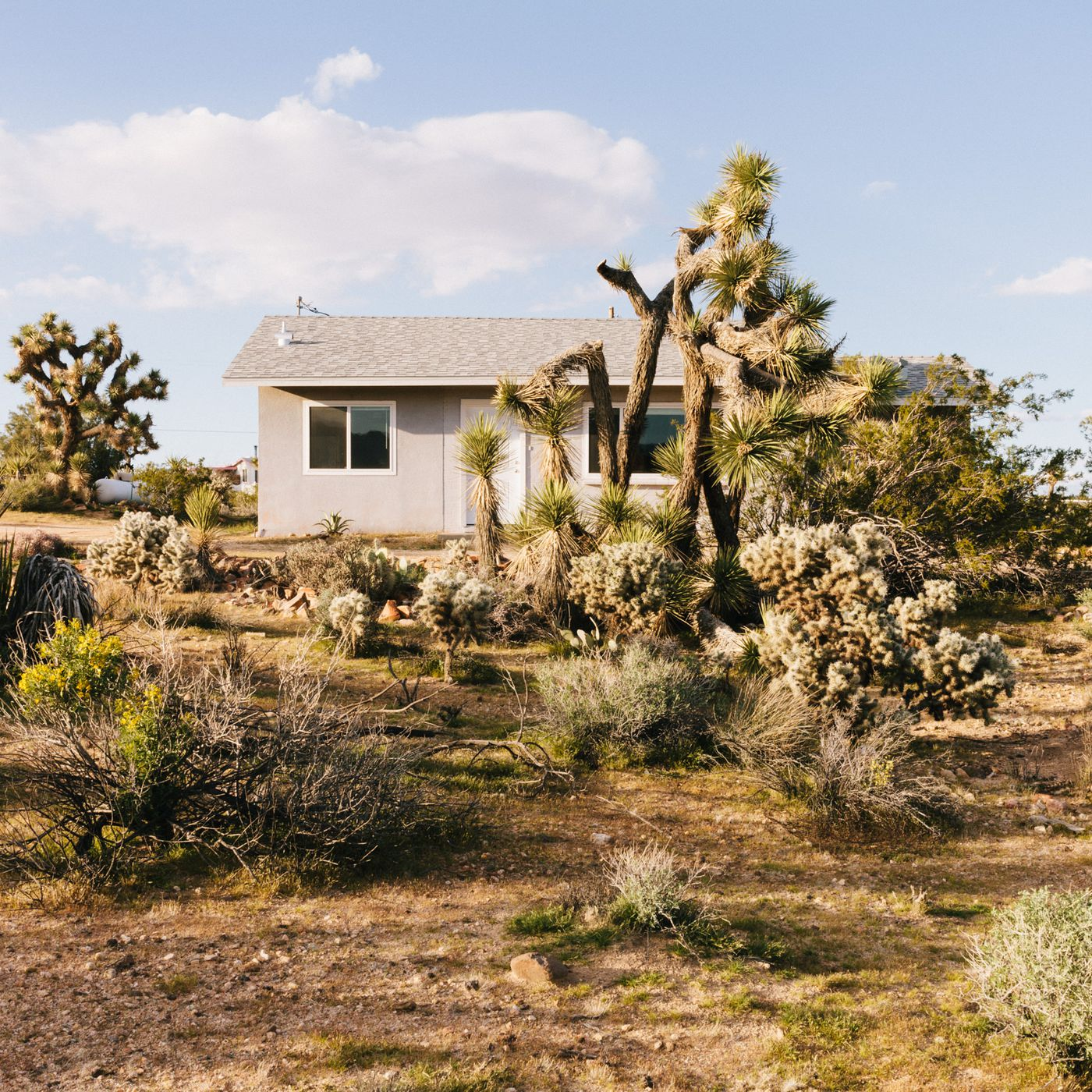 Joshua Tree midcentury home be es writer s refuge Curbed